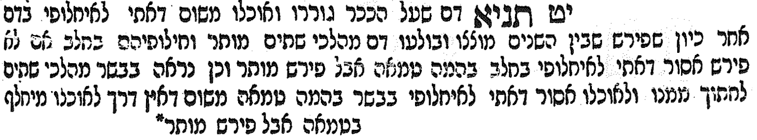 scan from Rosh's commentary on tractate Ketubot [Hebrew]